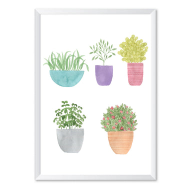 Watercolour House Plants Botanical Poster Print