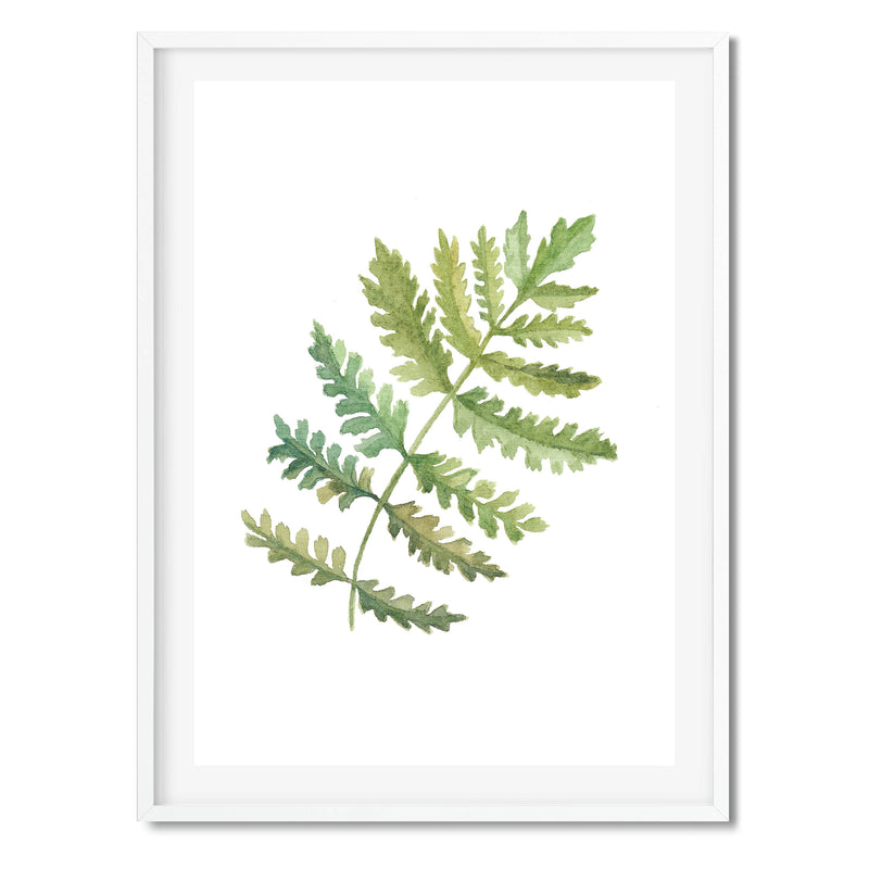Watercolour Fern Leaf Wall Art Print - Mode Prints