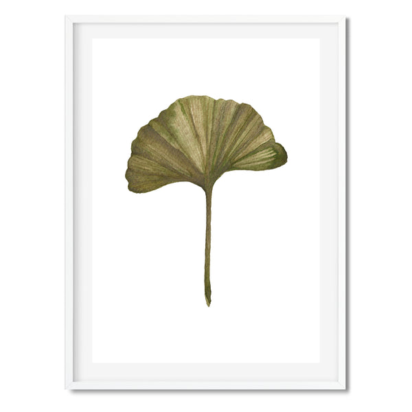 Watercolour Ginkgo Leaf Wall Art Print