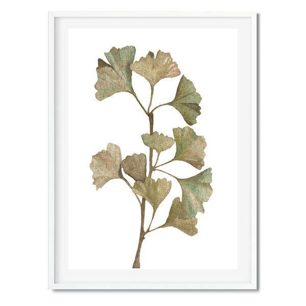 Watercolour Ginkgo Biloba Wall Art Print