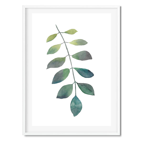 Watercolour Evergreen Leaf Wall Art Print - Mode Prints