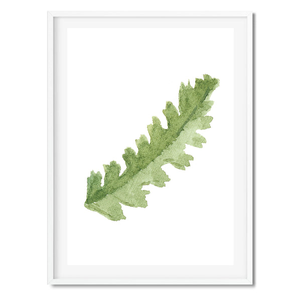 Watercolour Oak Leaf Wall Art Print
