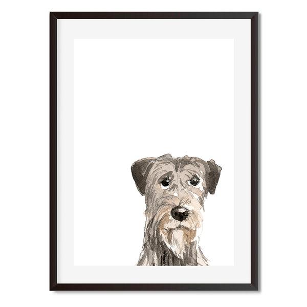 Irish Wolf Hound Peekaboo Wall Art Print - Mode Prints