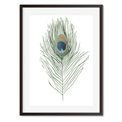 Peacock Feather 1 Wall Art Print - Mode Prints