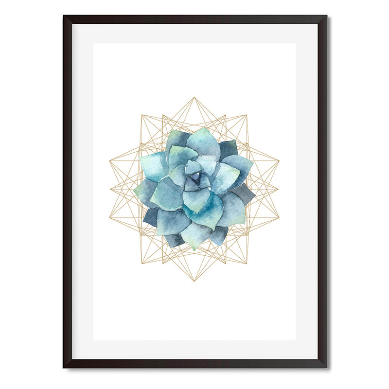 Succulent Planter 1 Wall Art Print