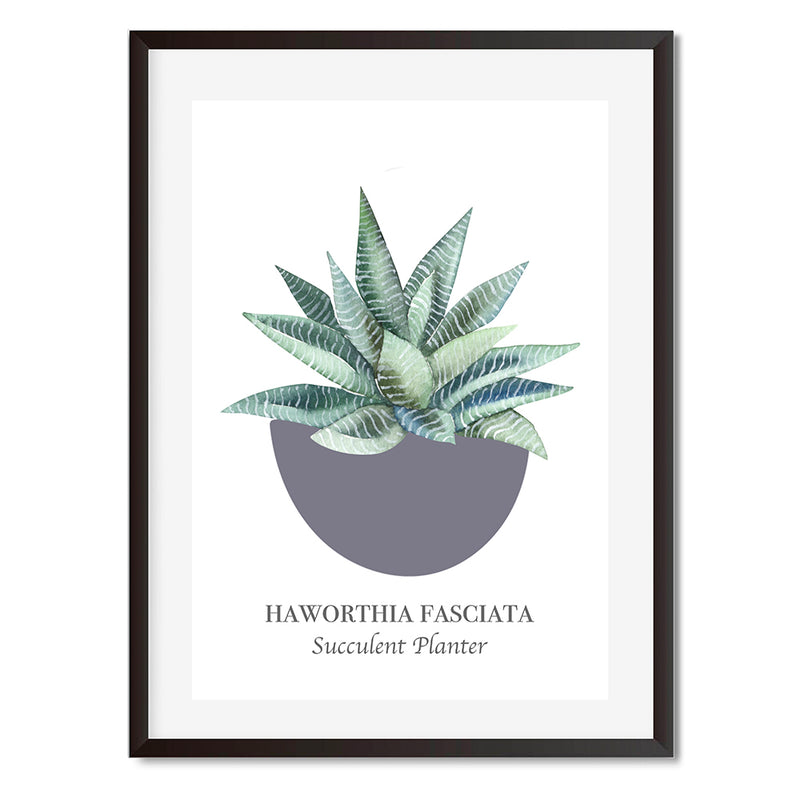 Vintage Named Succulent 1 Wall Art Print