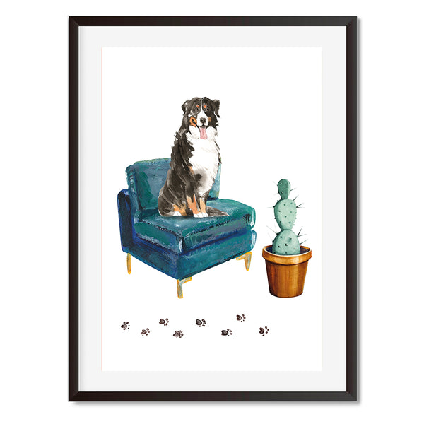 Bernese Mountain Dog On Armchair Wall Art Print - Mode Prints