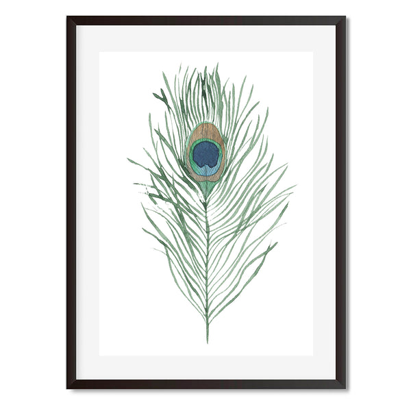 Peacock Feather 2 Wall Art Print - Mode Prints
