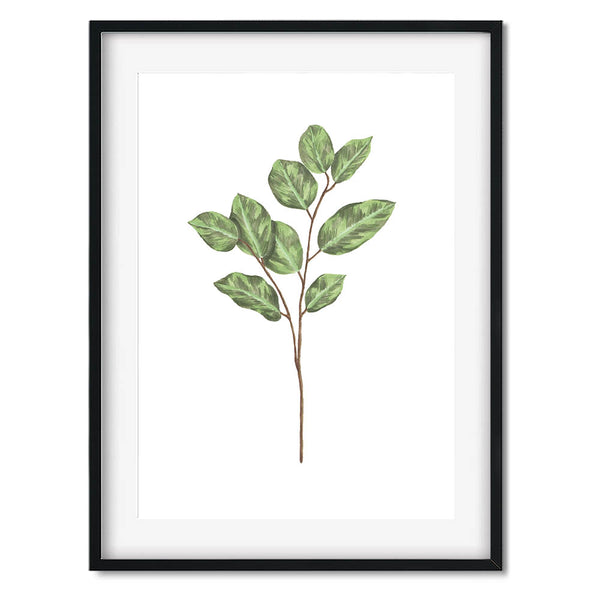 Botanical Leaves 3 Wall Art Print