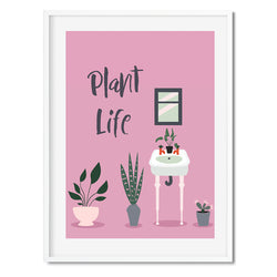 Plant Life Potted Plants Wall Art Print