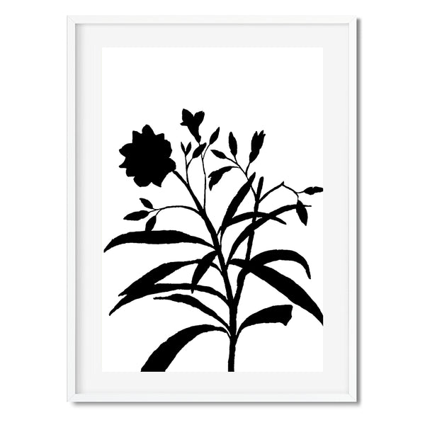 Black Botanical Plant Wall Art Print - Mode Prints