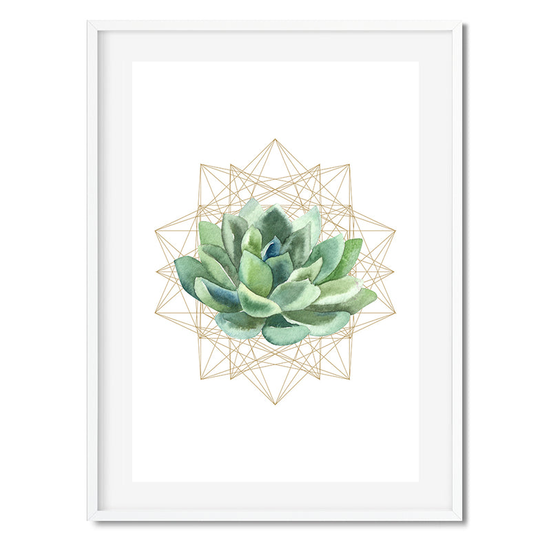 Succulent Planter 3 Wall Art Print