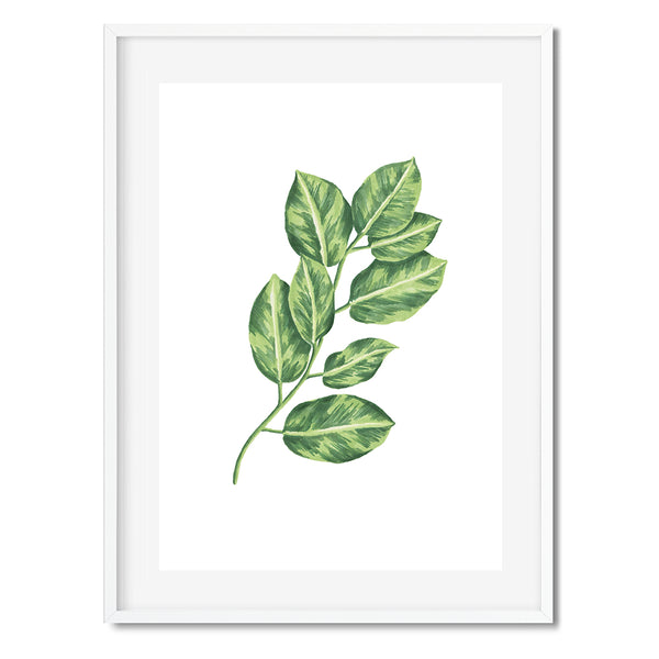 Botanical Leaves 10 Wall Art Print - Mode Prints