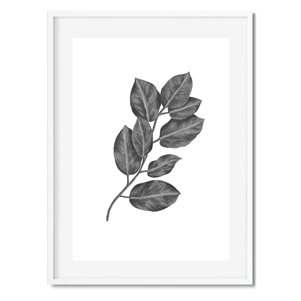 BOTANICAL LEAVES GREY Wall Art Print - Mode Prints