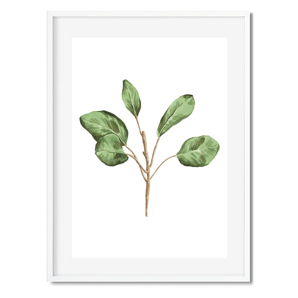 BOTANICAL LEAVES 6 Wall Art Print - Mode Prints