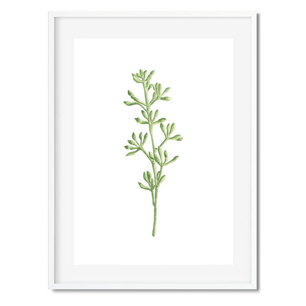 BOTANICAL LEAVES 2 Wall Art Print - Mode Prints