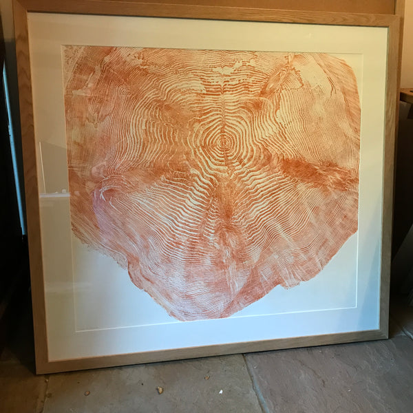 Douglas fir wood print
