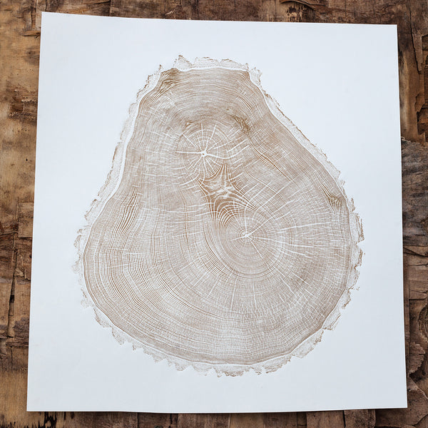 ancient ash tree muker printed