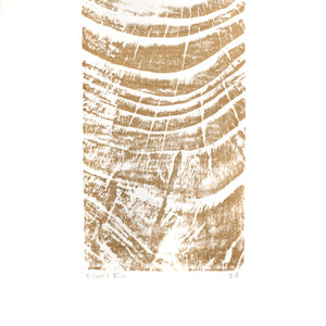 Relief Print Silver Fir (detail)