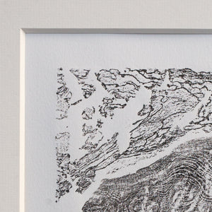 Burr Elm relief print art in mount