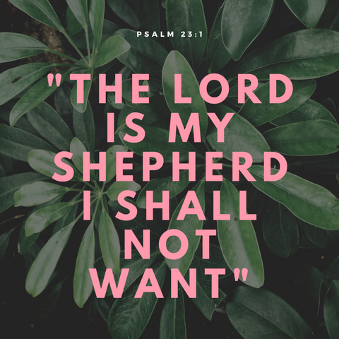 Psalm 23:1 The Lord is my shepherd, I shall not want