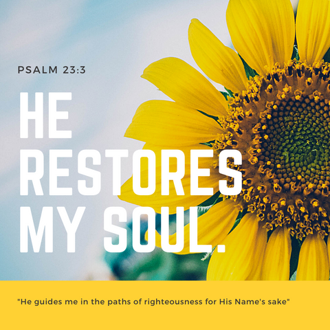 Psalm 23:3 He restores my soul