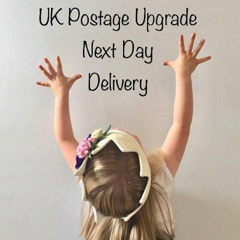 UK NEXT DAY GUARENTEED DELIVERY (not top up)