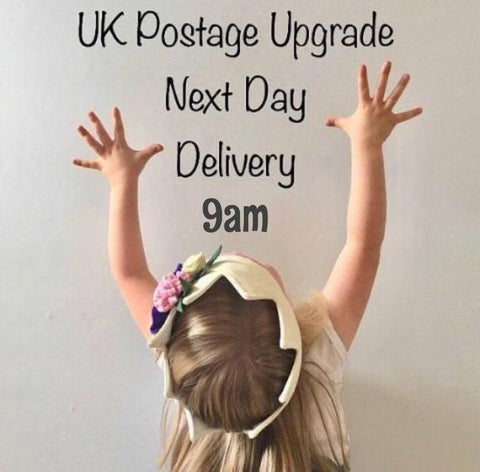 NEXT DAY 9am GUARENTEED DELIVERY