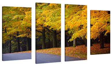 Oversize Canvas Wall Art Set of 4 by Elena Elisseeva Fall Trees,Sets of 4,Lanscapes,yellow art,Elena Elisseeva