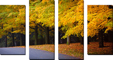 Wall Art Sets  , Artist:  Elena Elisseeva , Large Canvas Wall Art Sets of 4