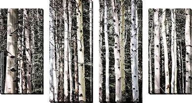 Large Canvas Wall Art Set of 4 by Elena Elisseeva Rockies,Sets of 4,Landscapes,white art,Elena Elisseeva