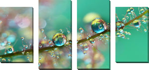 Set of 4 by Sharon Johnstone Smokey Rainbow Drops,Sets of 4,Floral,green art,Sharon Johnstone