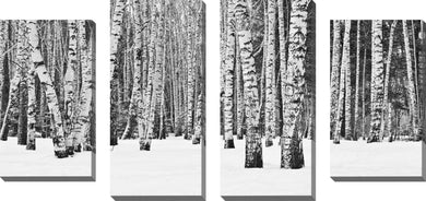 Large Canvas Wall Art Set of 4 by Birch Trees in Winter,Sets of 4,Landscapes,white art