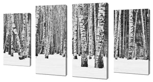 Oversize Canvas Wall Art Set of 4 by Birch Trees in Winter,Sets of 4,Landscapes,white art