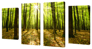 Oversize Canvas Wall Art Set of 4 by Blinded by the Light,Sets of 4,Landscapes,green art