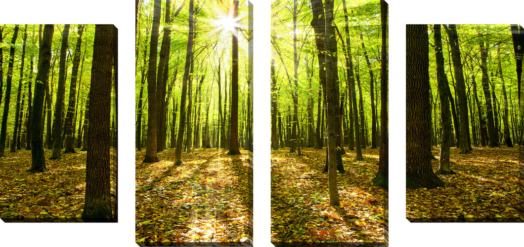 Large Canvas Wall Art Set of 4 by Blinded by the Light,Sets of 4,Landscapes,green art