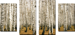 Large Canvas Wall Art Set of 4 by Birch Trees 3,Sets of 4,Landscapes,yellow art
