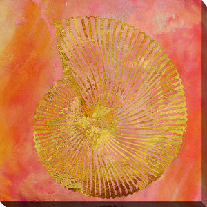 "Wall Art by Working Girls Design ""Sea Shell 1"", All Canvas Art,All Subjects,Coastal,Sea and Shore,All Colors,All Shapes,All Artists,orange art,Square Shape,BY Jodi"