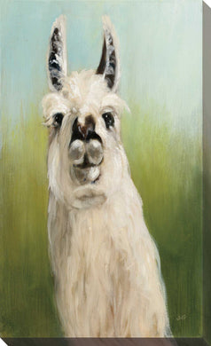 Whos Your Llama I by Julia Purinton Print on Canvas Animals,Green art,Portrait Shape,All Canvas Art,Julia Purington