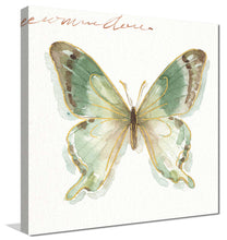 Rainbow Seeds Butterflies IIB by Lisa Audit Print on Canvas Animals,Green art,Square Shape,All Canvas Art,Lisa Audit