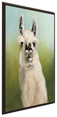 Whos Your Llama I by Julia Purinton Print on Canvas in Floating Frame Animals,Green art,Portrait Shape,All Floating Canvas,Julia Purington