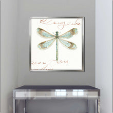 Rainbow Seeds Butterflies IB by Lisa Audit Print on Canvas in Floating Frame Animals,White art,Square Shape,All Floating Canvas,Lisa Audit
