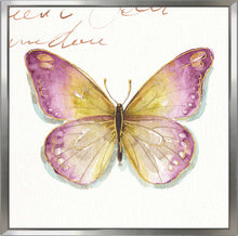 Rainbow Seeds Butterflies IC by Lisa Audit Print on Canvas in Floating Frame Animals,Pink art,Square Shape,All Floating Canvas,Lisa Audit