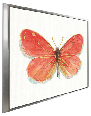 Rainbow Seeds Butterflies IIC by Lisa Audit Print on Canvas in Floating Frame Animals,Red art,Square Shape,All Floating Canvas,Lisa Audit