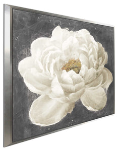 Vivid Floral I White Flower Print on Canvas in Floating Frame Floral,Gray art,Square Shape,All Floating Canvas,Danhui Nai