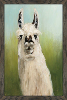 Whos Your Llama I by Julia Purinton Print on Acrylic Animals,Green art,Portrait Shape,All Acrylic Art,Julia Purington,All Subjects,All Colors,All Shapes,All Artists