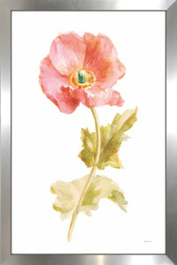 Garden Poppy Flipped on White Print on Acrylic Floral,White art,Portrait Shape,All Acrylic Art,Danhui Nai,All Subjects,All Colors,All Shapes,All Artists
