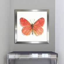Rainbow Seeds Butterflies IIC by Lisa Audit Print on Acrylic Animals,Red art,Square Shape,All Acrylic Art,Lisa Audit,All Subjects,All Colors,All Shapes,All Artists