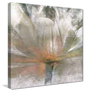 Lily Light by Mike Calascibetta Print on CanvasFloral,Gray art, Square Shape,Mike Calascibetta,All Canvas Art,All Subjects,All Colors,All Shapes,All Artists