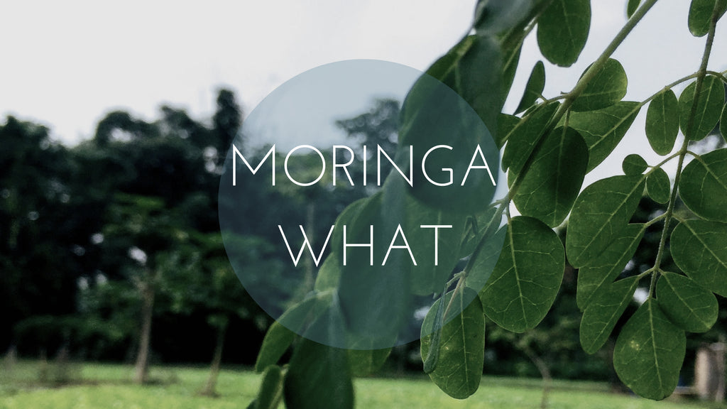 VITAMINS || A case for Moringa Oil